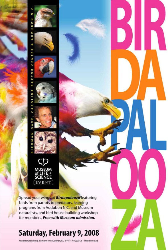 Birdapalooza poster