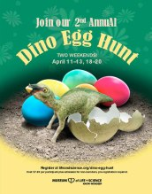 Dino Egg Hunt poster