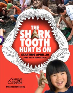 Shark Tooth Hunt poster