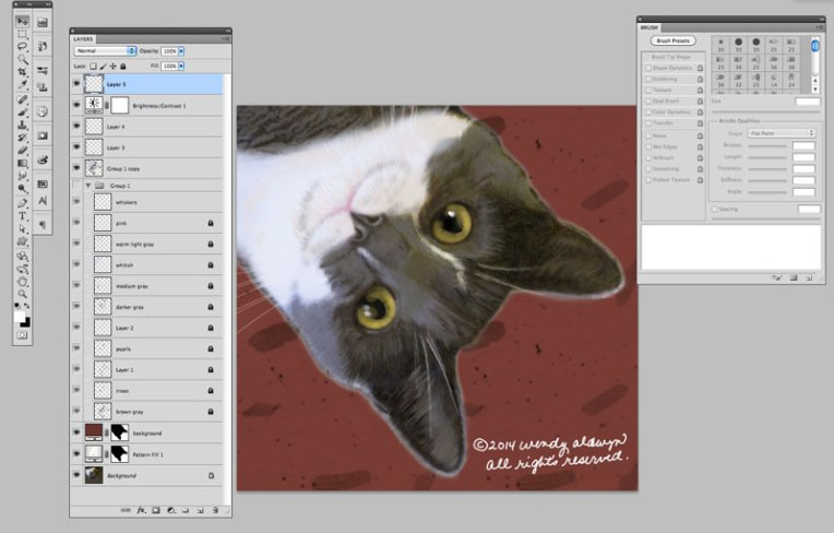 Cat-staring-screenshot-800