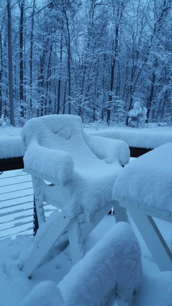 Snow deck February 26 am.jpg